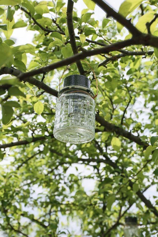 1000+ ideas about Outdoor Garden Lighting on Pinterest ...