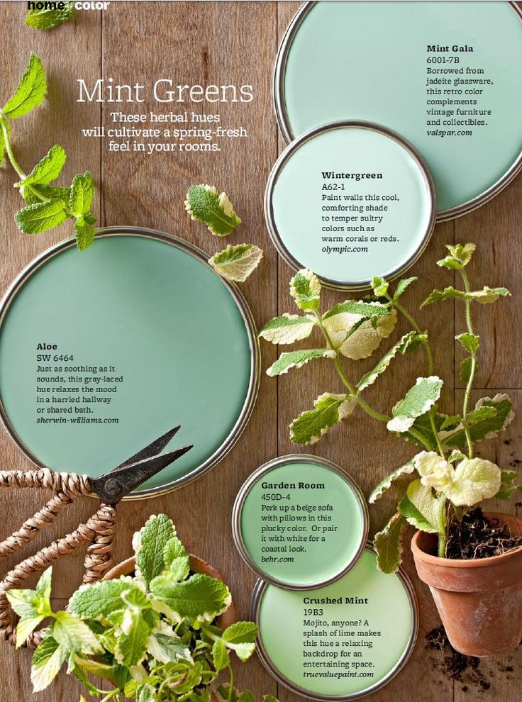 """Mint Green Paint Colors – On-trend, but completely livable, take a cue from these mint green paint colors to soothe any room. """"Mint greens are happy colors that work in a lot of different"""