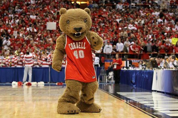 Cornell Big Red mascot, Big Red Bear   College Mascots ...