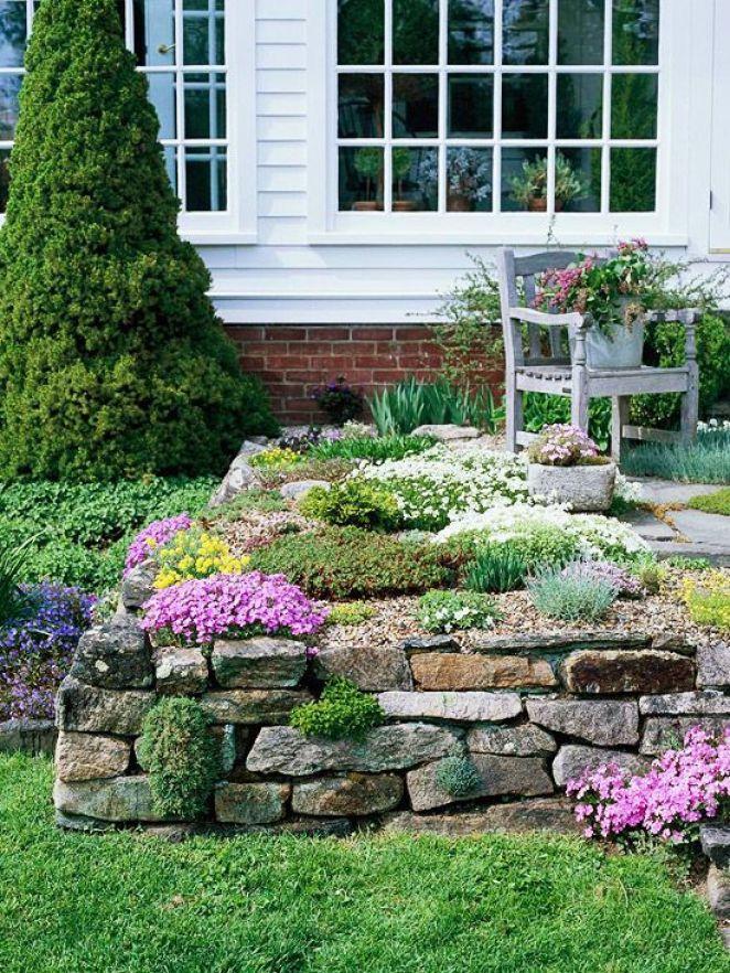 Le piante tra le rocce creeranno un meraviglioso contrasto tra il grigio della pietra e i loro colori
