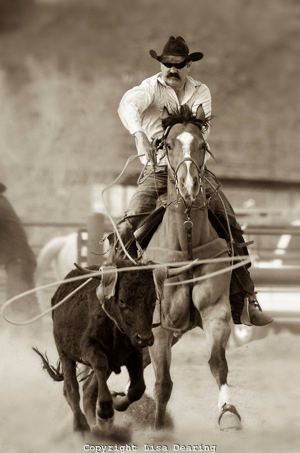 164 Best Images About Cheyenne Frontier Days On Pinterest