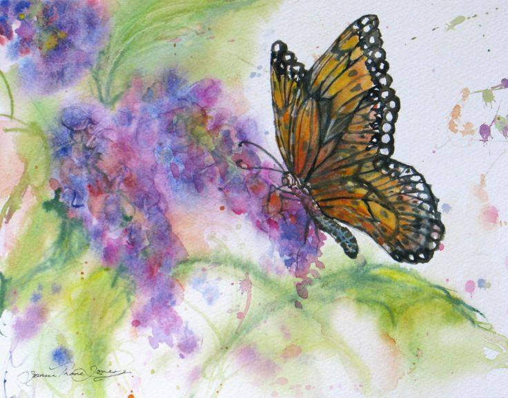 151 Best Images About Butterfly And Flower Paintings On