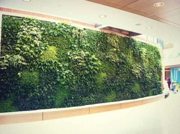 vertical garden institute 1000+ images about Vertical Gardens on Pinterest