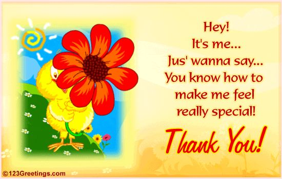 123 greeting cards birthday thank you poemview a special thanks free thank you ecards greeting cards 123 m4hsunfo