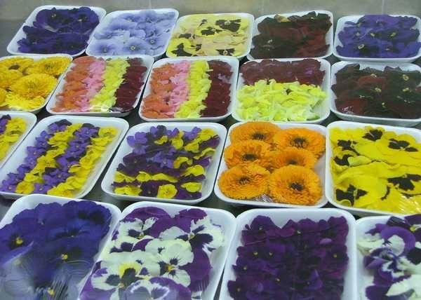 Цветы в изысканных рецептах