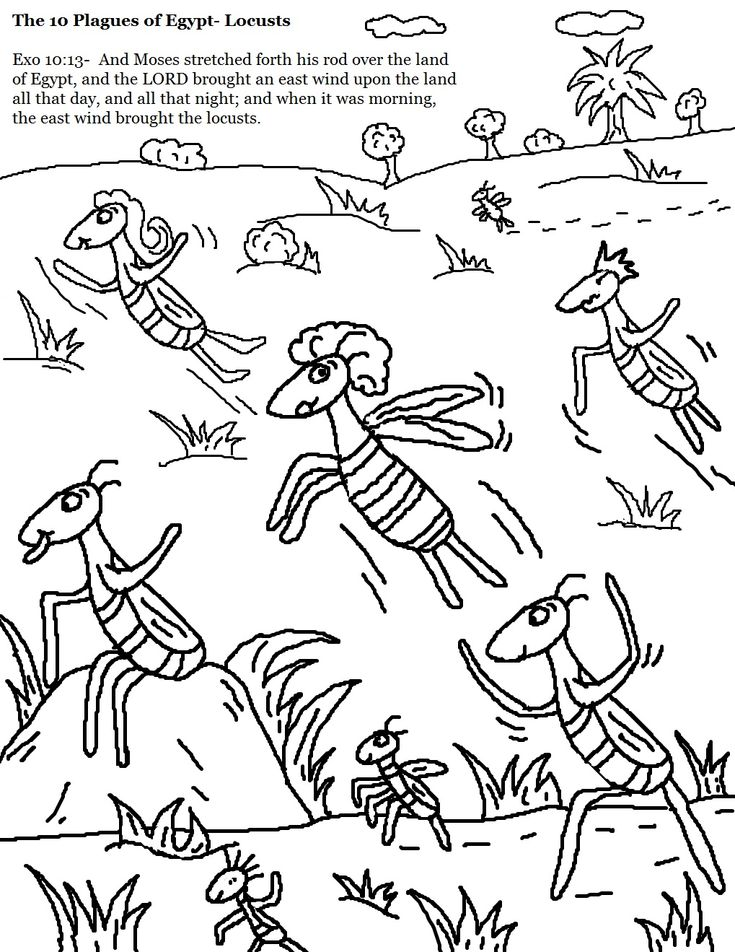 the 10 plagues of egypt locusts coloring pages 1019