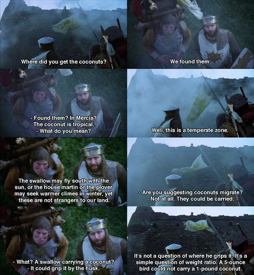 Quote from Monty Python and the Holy Grail