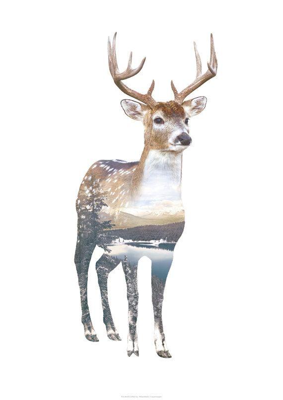 25 Best Ideas About Deer Art On Pinterest Deer Drawing