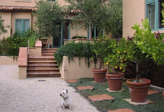 21 Best Tuscan Landscape Design Images On Pinterest