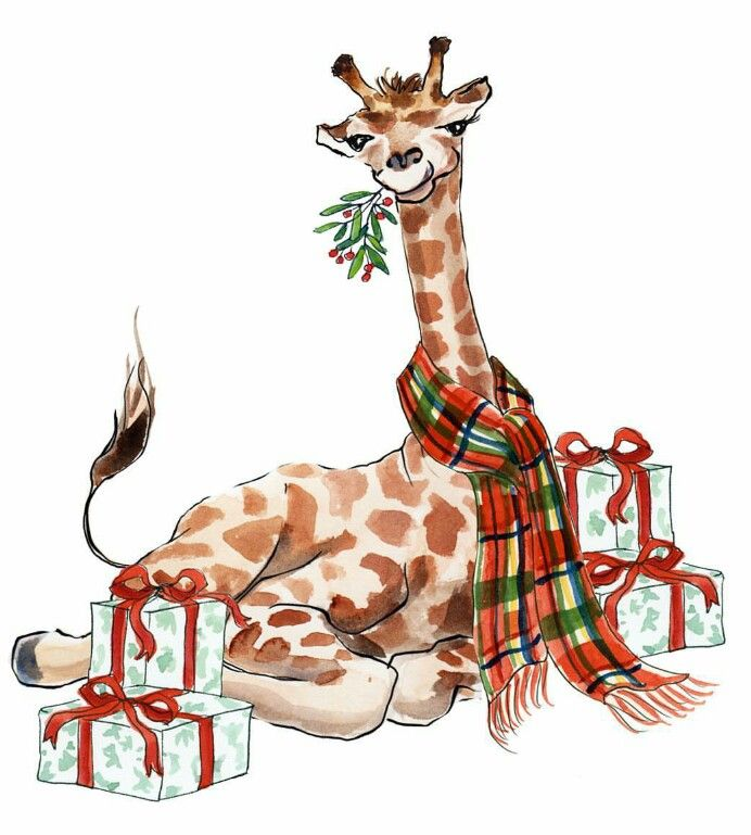 161 Best Images About Giraffe Illustrations On Pinterest