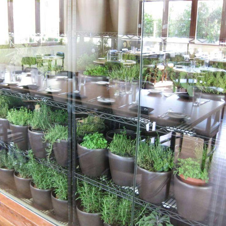 36 best restaurant herb gardens images on pinterest on outdoor kitchen herb garden id=37537