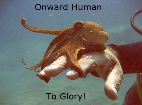 Epic Octopus… creatures make me laugh.