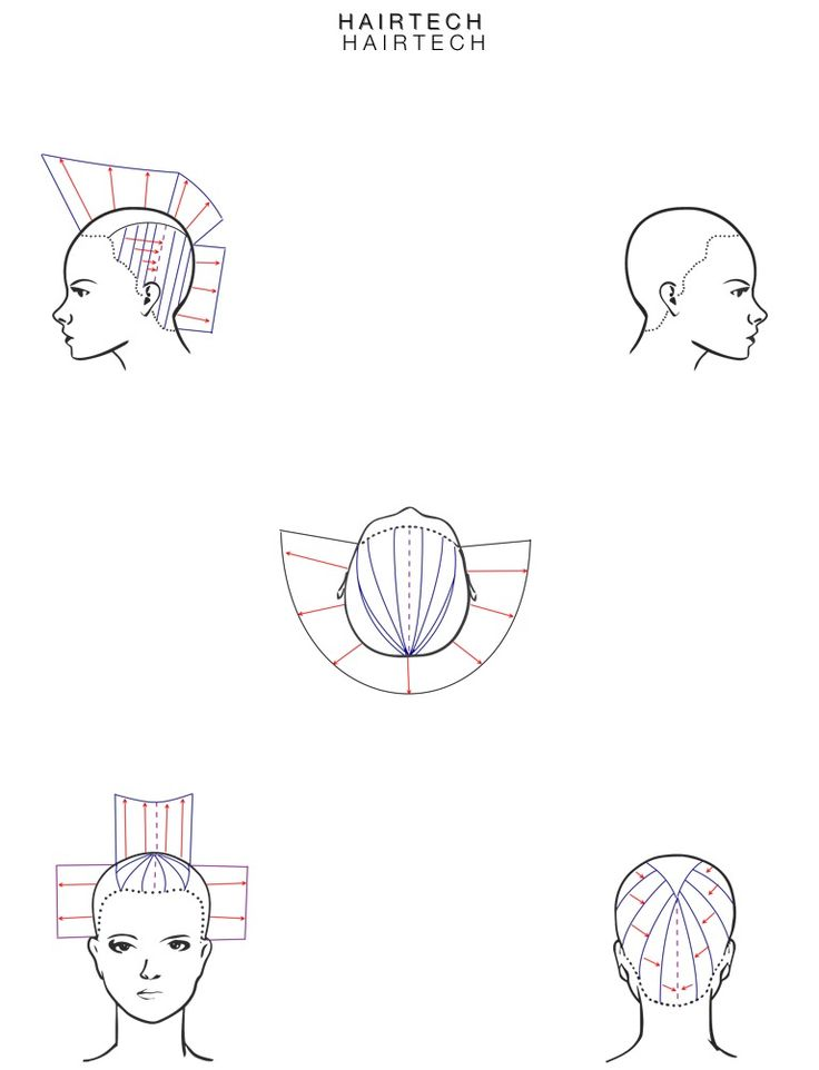 Printable Cosmetology Head Sheets Sketch Coloring Page