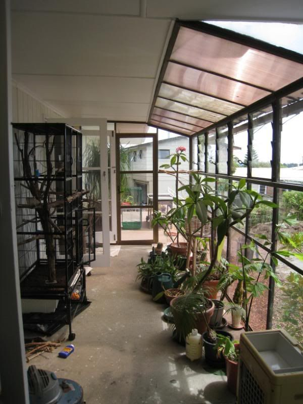 Homes With Indoor Aviary Google Search Aviaries