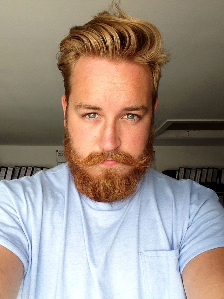 25 Best Ideas About Ginger Beard On Pinterest Bearded