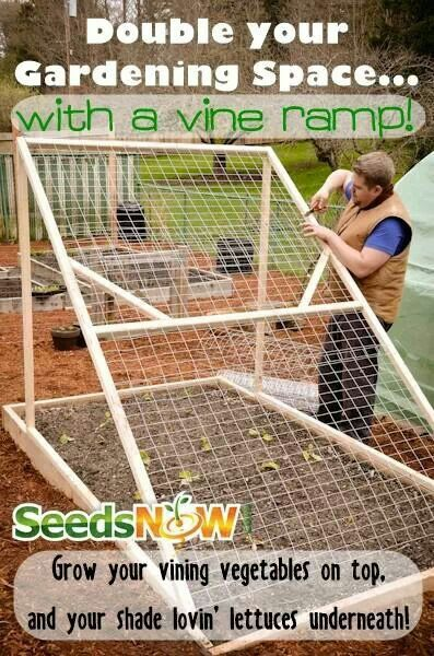 Garden planter. This is a great idea and would be so much easier to pick than the old fashioned way.