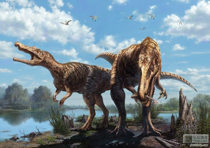 17 Best Images About Spinosauridae PaleoArt Drawing On