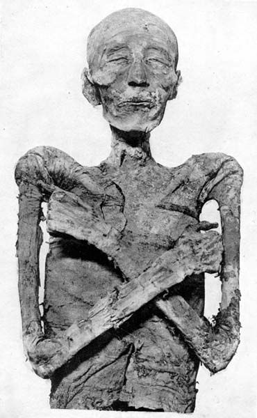 1000 Images About Royal Mummies On Pinterest Amenhotep