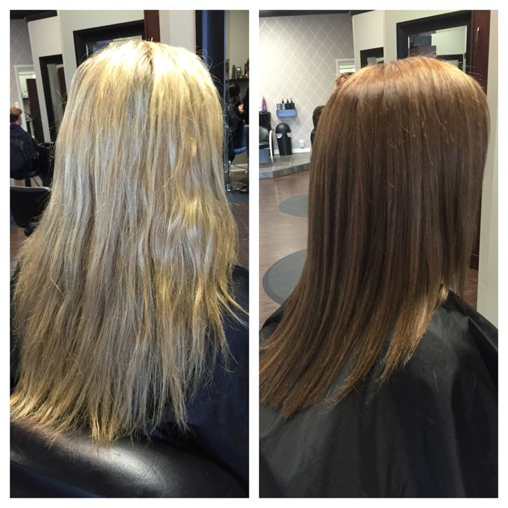 Blonde To Light Brown Before And After Fall Color Tint