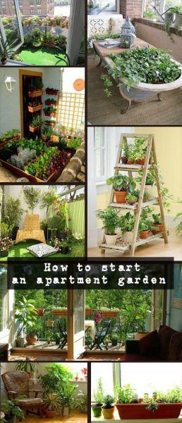 indoor gardens apartment design 25+ best ideas about Small Space Gardening on Pinterest