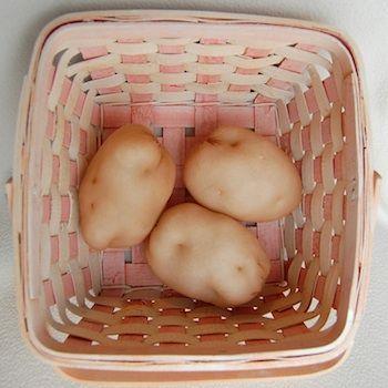 pantyhose potatoes – play f