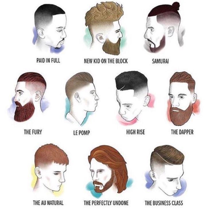 Mens Hair Cuts And Beard Chart Man Bun Mustache Beard