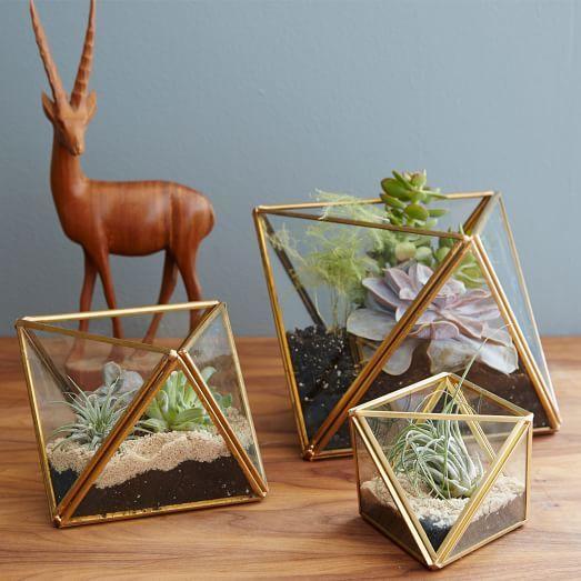 geometrisch terrarium