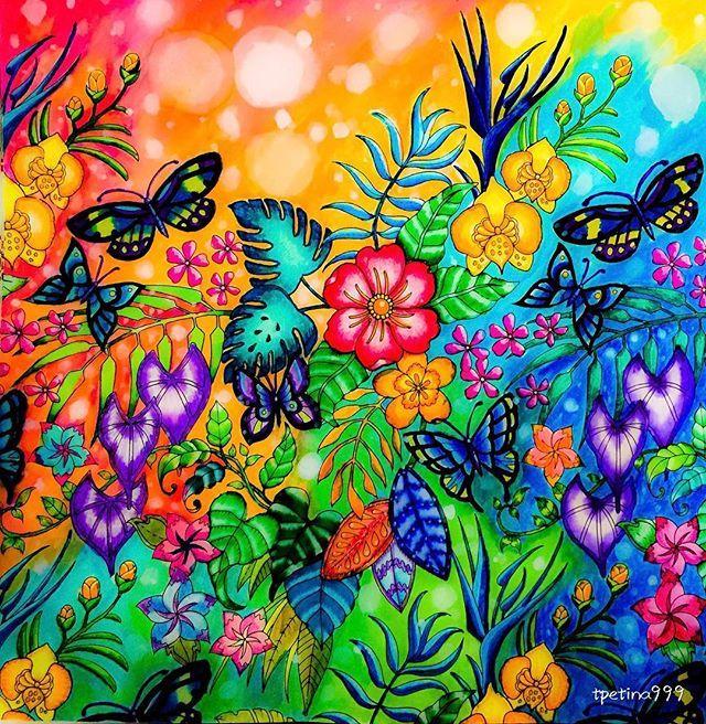 343 Curated Magical Jungle Johanna Basford Ideas By