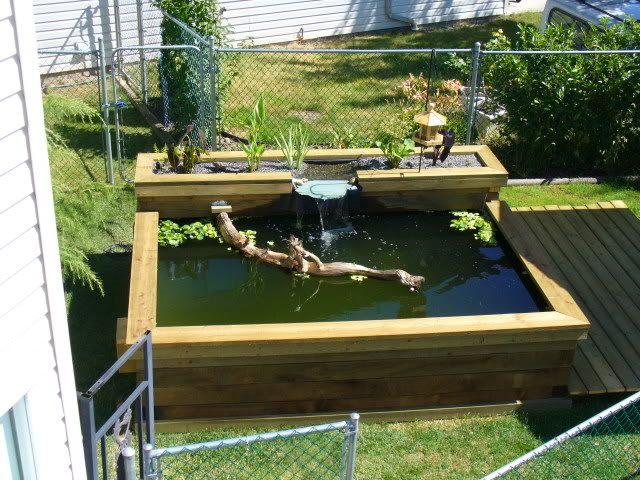 The 25+ best Above ground pond ideas on Pinterest   Pond ... on Above Ground Ponds Ideas id=96660