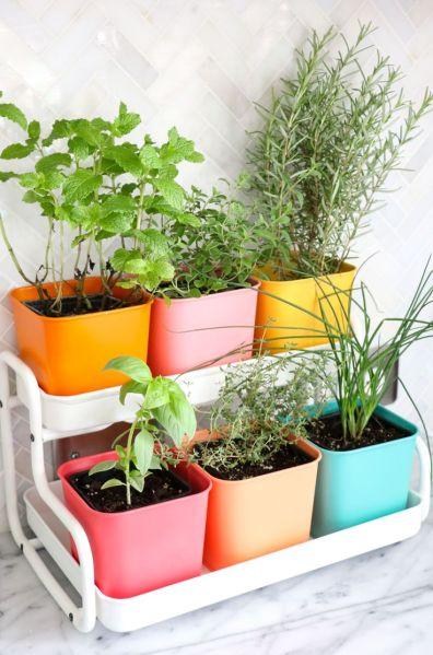 indoor herb garden Best 25+ Herb garden indoor ideas on Pinterest