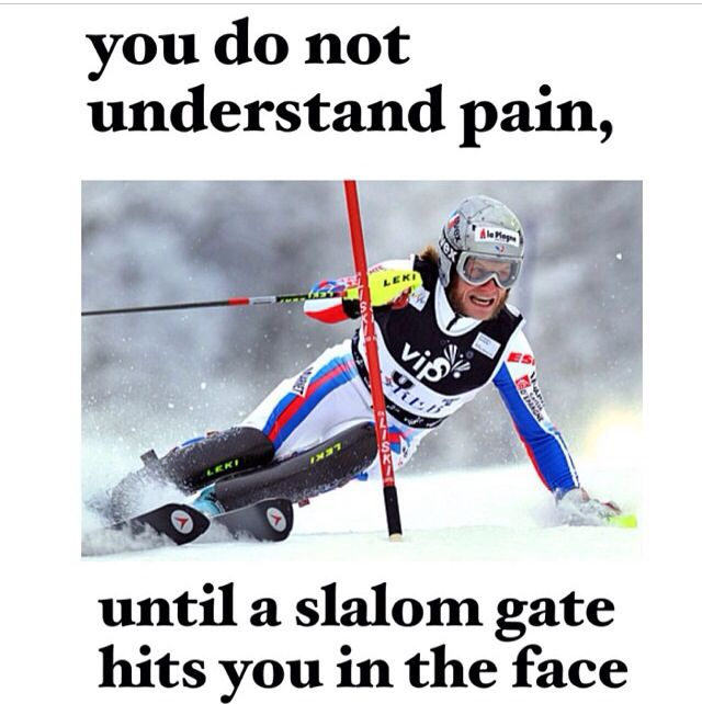 Skiing Quotes Magnificent Downhill Snow Skiing Funny Quotes