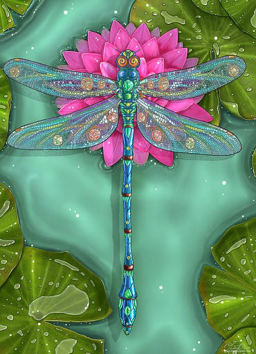25 Best Ideas About Dragonfly Art On Pinterest Spoon