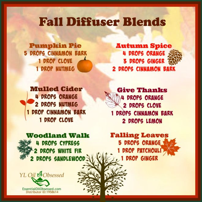 Holiday Cheer with a Diffuser | EssentialOilObses….  Fall diffuser blends