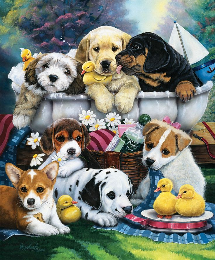 1000 Ideas About Jigsaw Puzzles On Pinterest Puzzle