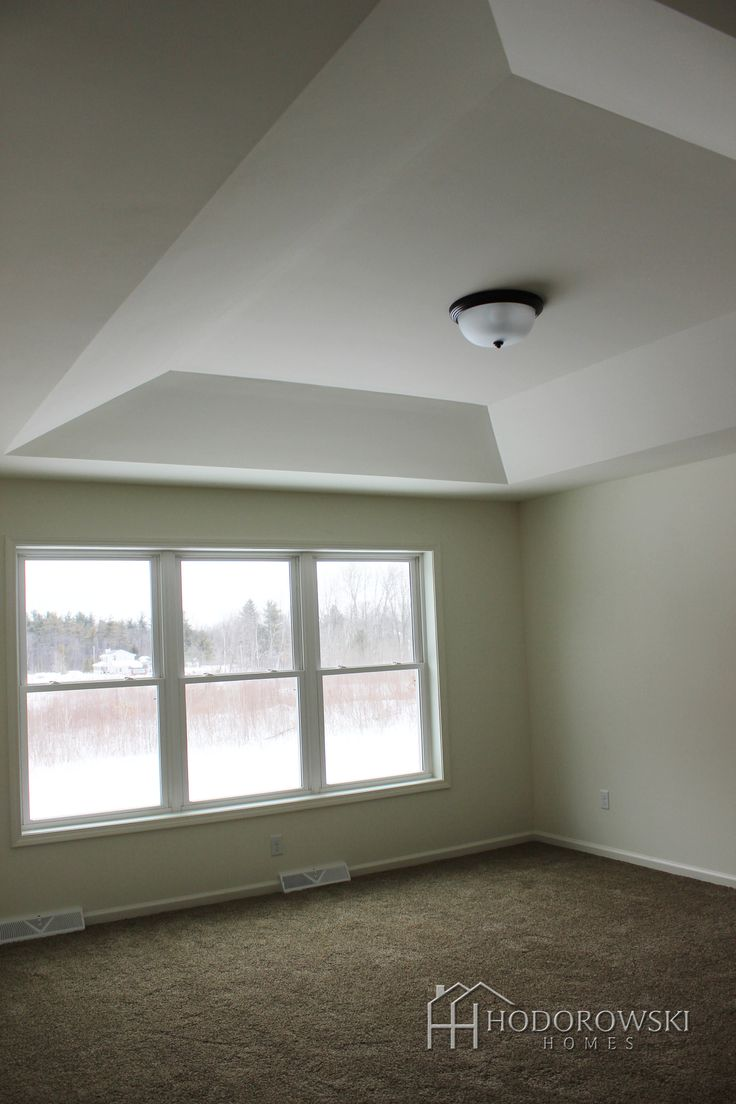 This Master Bedroom In A Hoover Design Has A Breathtaking View With Inverted Tray Ceiling And