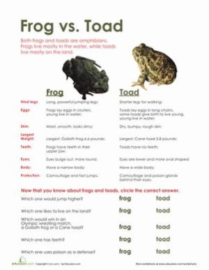 Frog vs Toad   The two, The o'jays and Life science