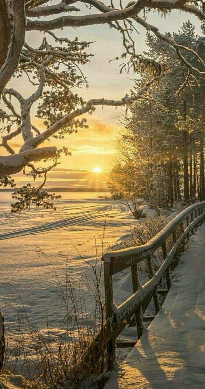 25 Best Ideas About Winter Landscape On Pinterest