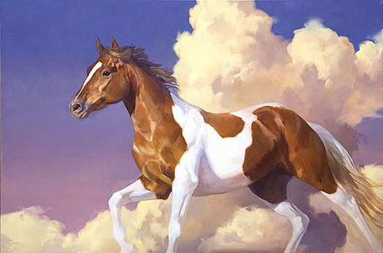 17 Best Images About Horse Drawingspaintings On