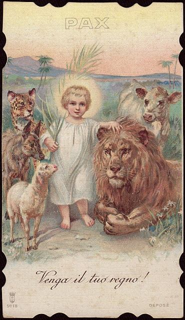 17 Best Images About The Lion And The Lamb On Pinterest