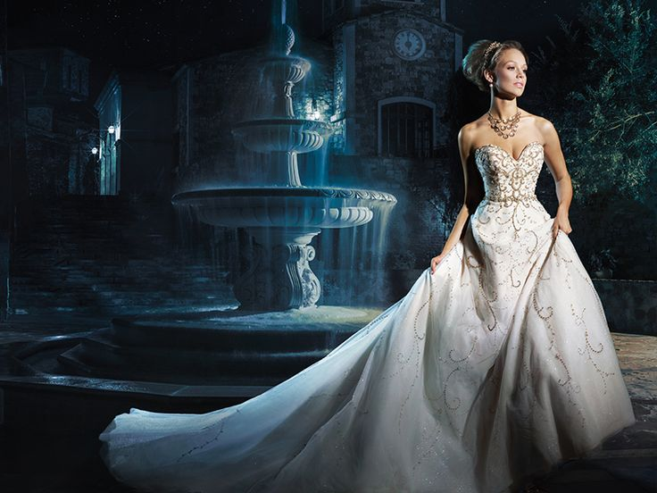 Romantic And Regal, This Cinderella Inspired Dress From
