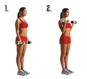 Image result for STANDING DUMBBELL BICEP CURLS