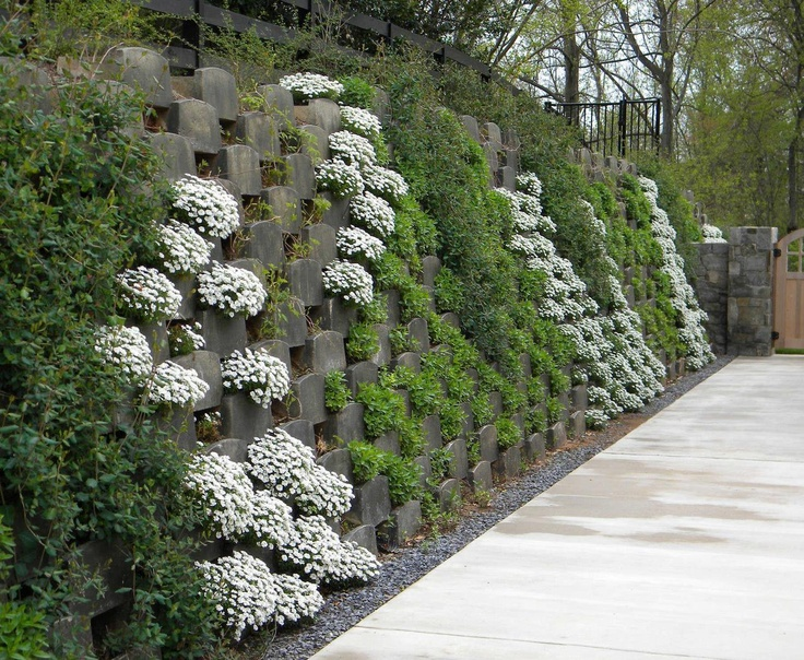 17 best images about retaining wall cover ideas on on retaining wall id=69950