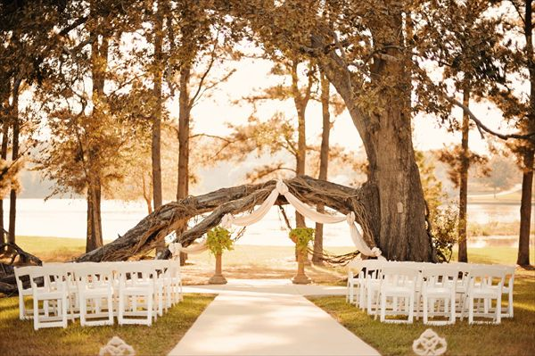 Castle On The Lake Trees Wedding Venues And Lakes