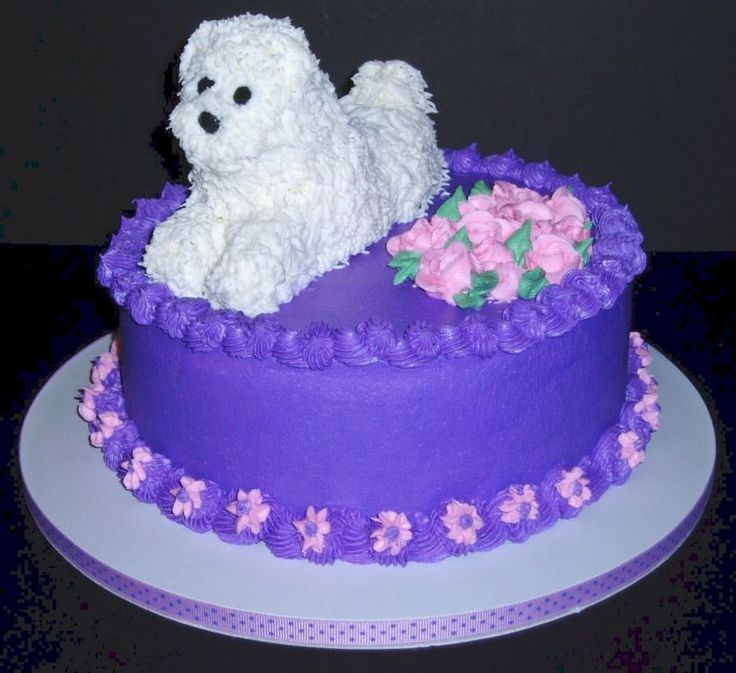Dog Birthday Cake Give Your Dog A Special Treat No
