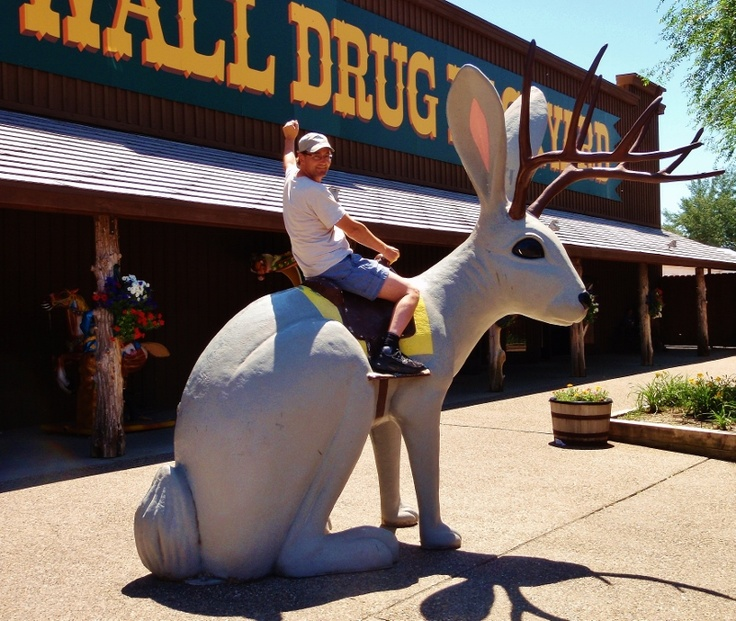 1000 images about jackalopes on pinterest on wall drug south dakota id=59400