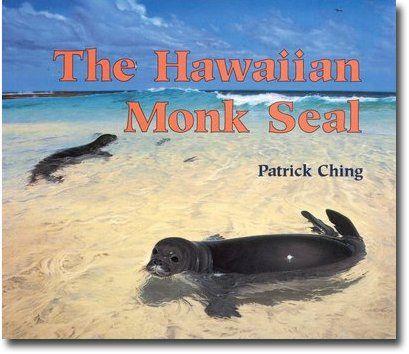 141 best images about Arctic / Antarctic - Seal, Sea Lion ...