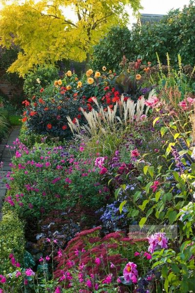 beautiful flower gardens pinterest Beautiful plant mix | Petals and outdoor scenes