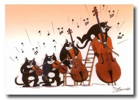 Cats Playing Violin Viola Cello And Bass Animal Magic