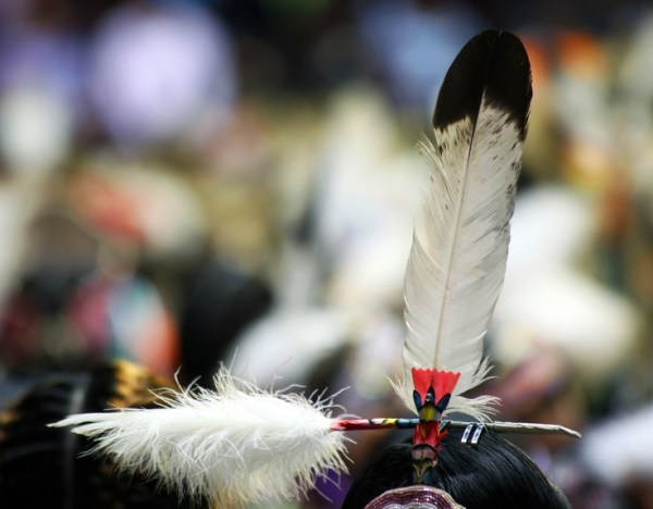 78 Best images about Feather work. on Pinterest | L'wren ...