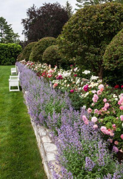 rose garden Carolyne Roehm's rose garden at Weatherstone, BEAUTIFUL